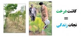 کاشت درخت= نجات زندگی  (بخش نخست)