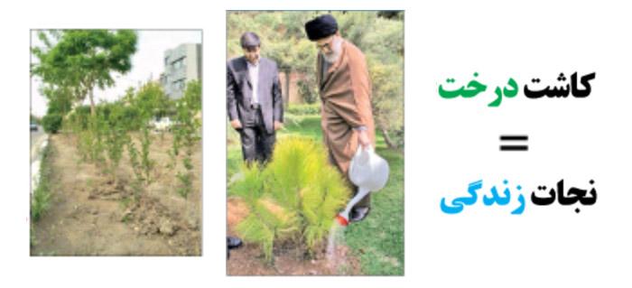 Photo of کاشت درخت= نجات زندگی  (بخش نخست)