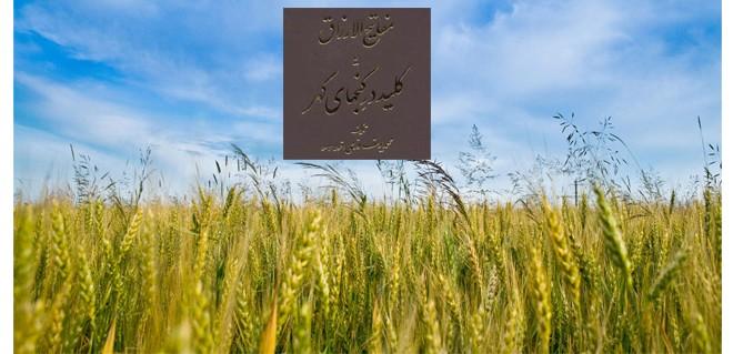 مبانی کشاورزی بومی – مفتاح هفتم