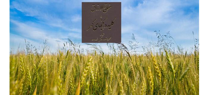 Photo of شرحی از کتاب مفاتیح الارزاق
