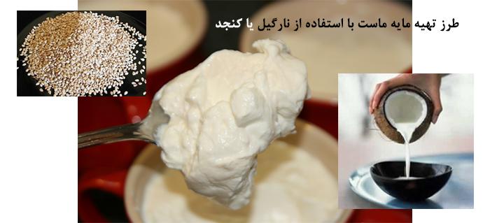 Photo of طرز تهیه مایه ماست با استفاده از نارگیل یا کنجد