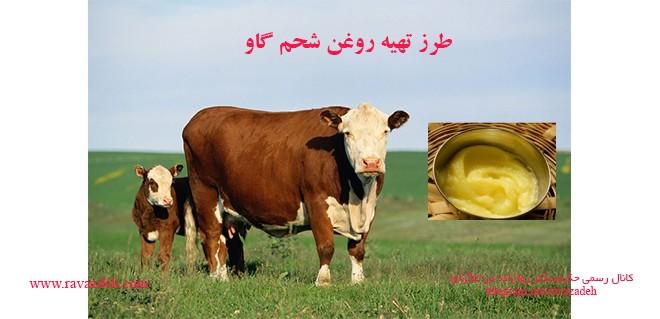 طرز تهیه روغن شحم گاو