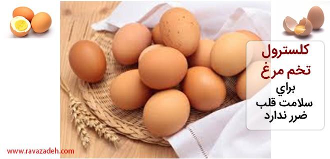کلسترول تخم مرغ برای سلامت قلب ضرر ندارد