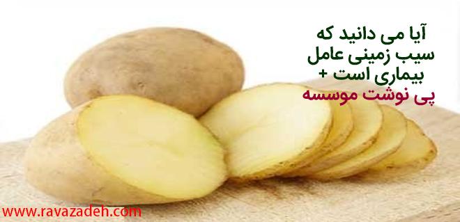 Photo of آیا می دانید که سیب زمینی عامل بیماری است + پی نوشت موسسه
