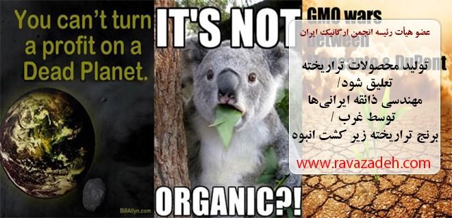 تولید محصولات تراریخته تعلیق شود/مهندسی ذائقه ایرانیها توسط غرب/برنج تراریخته زیر کشت انبوه
