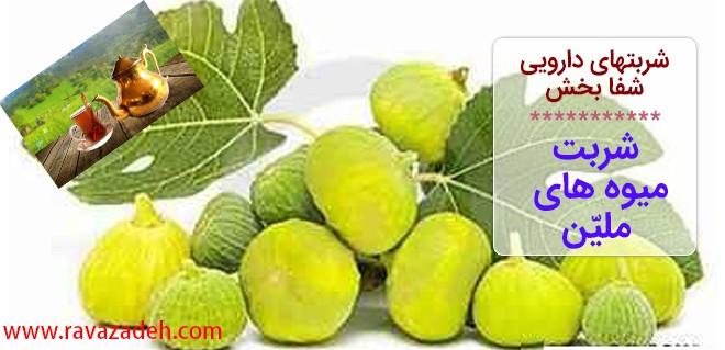 شربتهای دارویی شفا بخش – شربت میوه های ملیّن