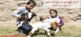 اسلام نگهداری از حیوانات اهلی را جایز می شمارد