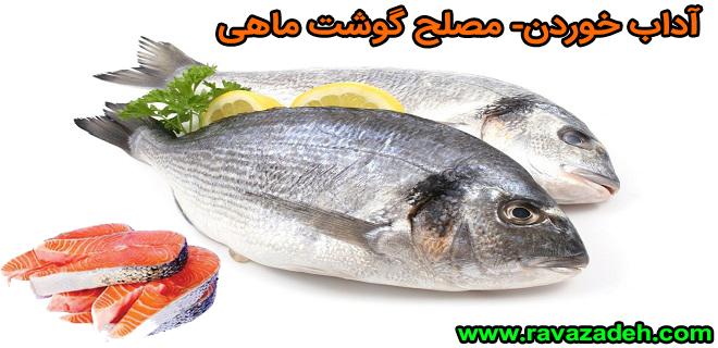 Photo of آداب خوردن- مصلح گوشت ماهی