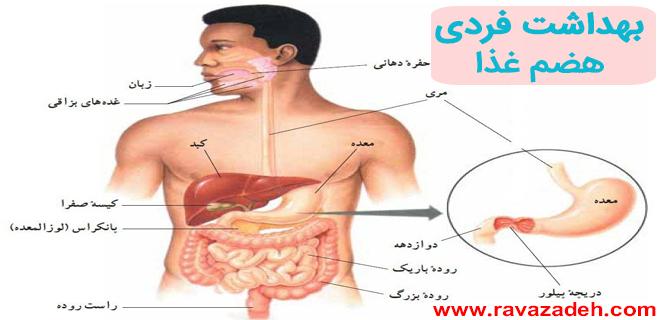 Photo of بهداشت فردی- هضم غذا
