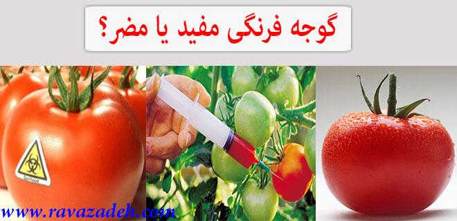 Photo of گوجه فرنگی مفید یا مضر؟