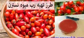 طرز تهیه رب میوه نسترن جایگزین مناسبی برای رب گوجه فرنگی