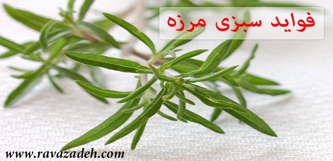 Photo of فواید سبزی مرزه