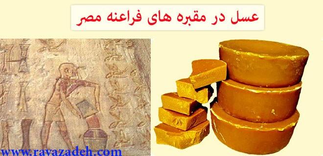 عسل در مقبره های فراعنه مصر