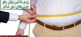 رژیم غذایی برای رفع چربی های دور شکم