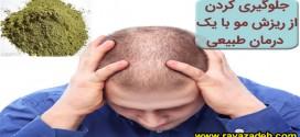 جلوگیری کردن از ریزش مو با یک درمان طبیعی
