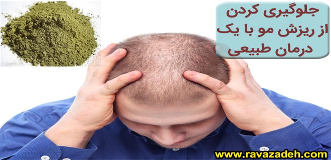 Photo of جلوگیری کردن از ریزش مو با یک درمان طبیعی
