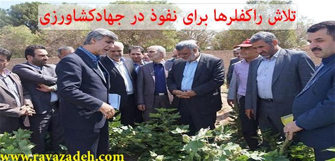 Photo of تلاش راکفلرها برای نفوذ در جهاد کشاورزی