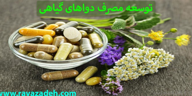 توسعه مصرف دواهای گیاهی