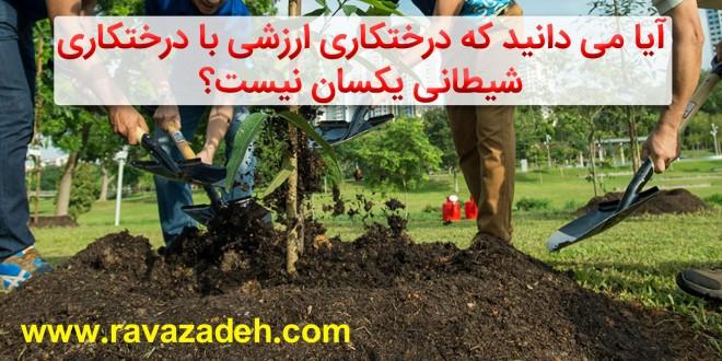 آیا می دانید که درختکاری ارزشی با درختکاری شیطانی یکسان نیست؟