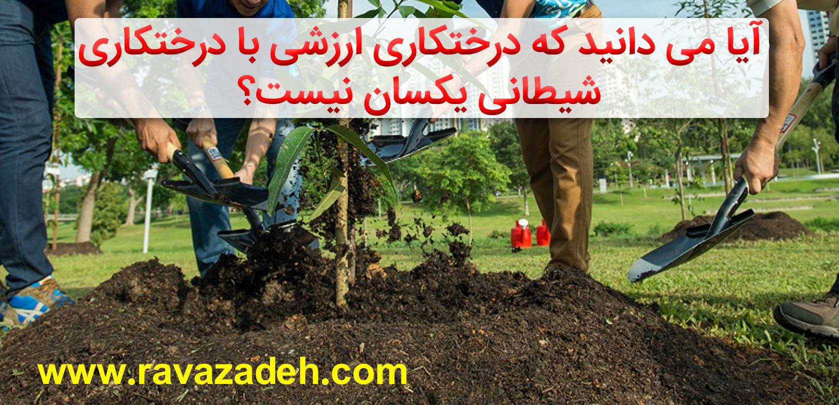 Photo of آیا می دانید که درختکاری ارزشی با درختکاری شیطانی یکسان نیست؟
