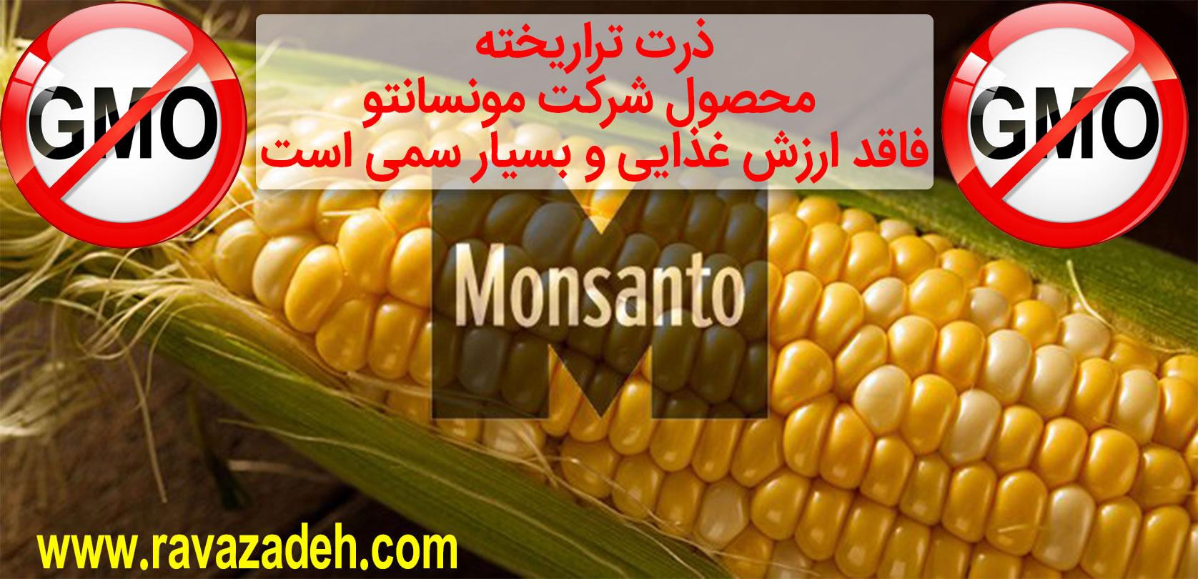 Photo of آزمایشات نشان دادهاند که ذرت تراریخته،محصول شرکت مونسانتو فاقد ارزش غذایی و بسیار سمی است
