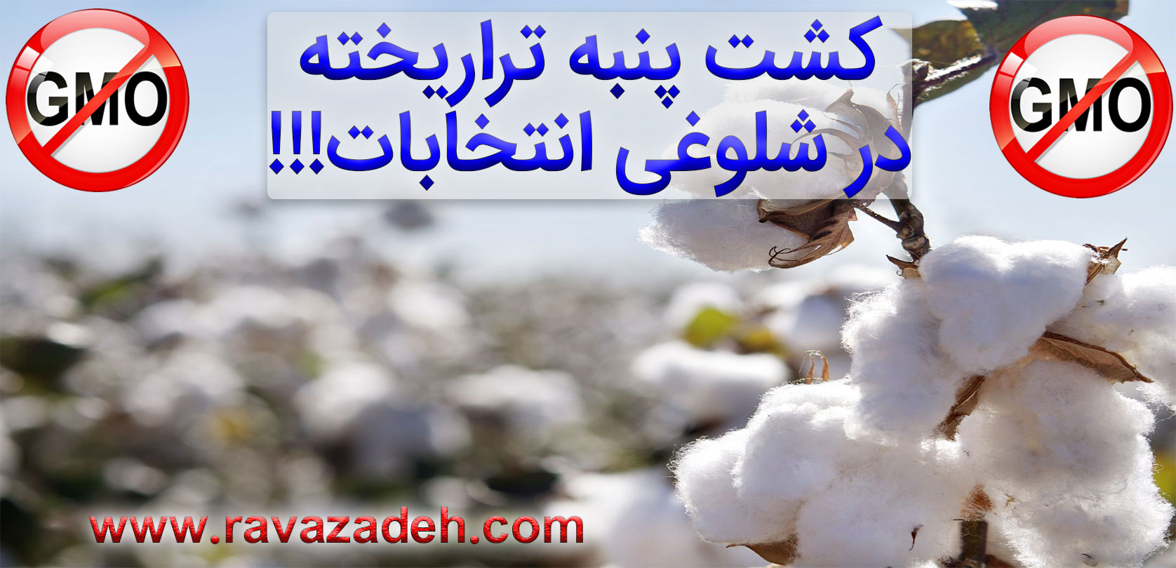 Photo of یک خیانت دیگر به سلامت و کشاورزی ایران در شلوغی انتخابات