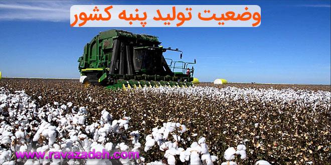 Photo of پنبه تراریخته و وضعیت تولید پنبه کشور