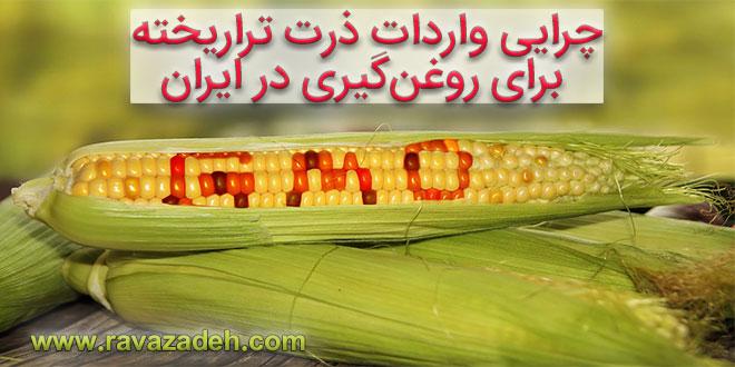 Photo of ۸۹درصد محصولات کشاورزی دنیا «غیرتراریخته» است/ چرایی واردات ذرت تراریخته برای روغنگیری در ایران