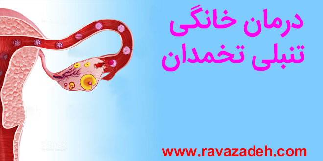 Photo of توصیه بهداشتی: درمان خانگی تنبلی تخمدان