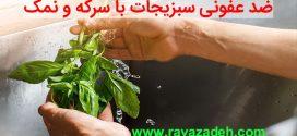 ضد عفونی سبزیجات با سرکه و نمک