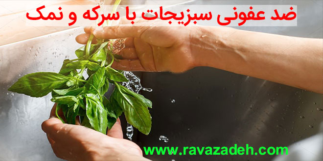 Photo of ضد عفونی سبزیجات با سرکه و نمک
