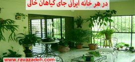 در هر خانه ایرانی جای گیاهان خالی