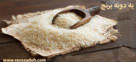 موشن گرافی: یه دونه برنج!