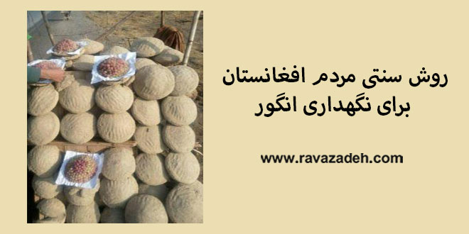 Photo of روش سنتی مردم افغانستان برای نگهداری انگور