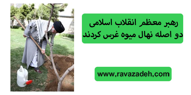 رهبر معظم انقلاب اسلامی دو اصله نهال میوه غرس کردند