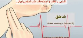 آشنایی با لغات و اصطلاحات طب اسلامی ایرانی: شاهق (Pulse towering – Elevated.P)