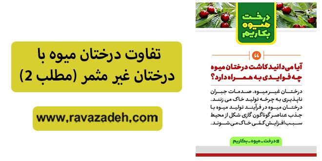 تفاوت درختان میوه با درختان غیر مثمر (مطلب ۲)