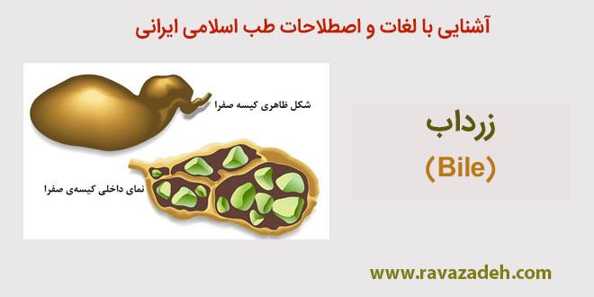 Photo of آشنایی با لغات و اصطلاحات طب اسلامی ایرانی: زرداب (Bile)