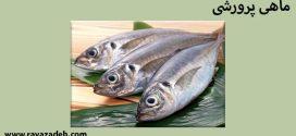 کلیپ سخنرانی حکیم دکتر روازاده: ماهی پرورشی به سبک استعماری!