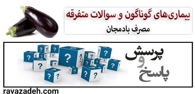Photo of مصرف بادمجان