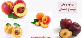 در سود و زیان میوههای تابستانی
