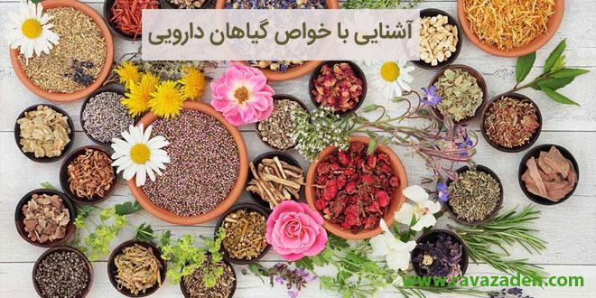 آشنایی با خواص گیاهان دارویی