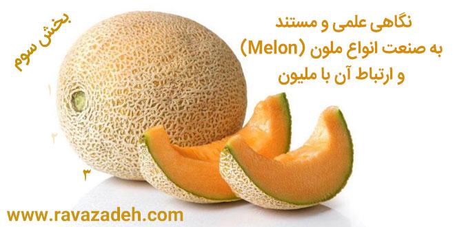 Photo of نگاهی علمی و مستند به صنعت انواع ملون (Melon) و ارتباط آن با ملیون – بخش سوم
