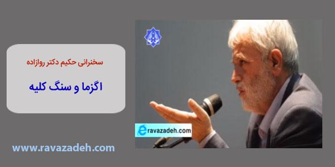 Photo of فایل سخنرانی حکیم دکتر روازاده: اگزما و سنگ کلیه
