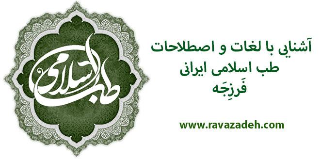 Photo of آشنایی با لغات و اصطلاحات طب اسلامی ایرانی: فَرزِجَه