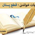 مجموعه حکایت های خواندنی: قطع پستان