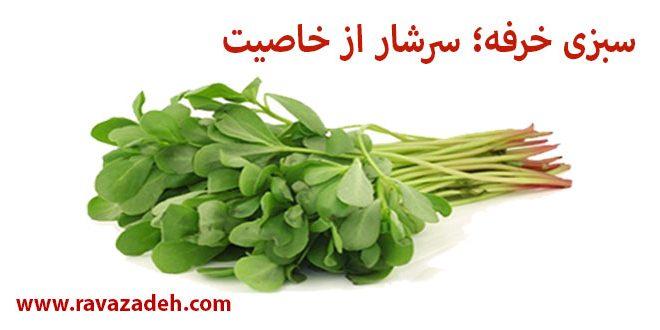 سبزی خرفه؛ سرشار از خاصیت
