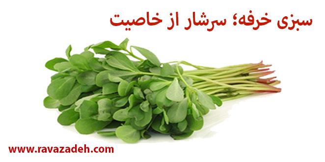 Photo of سبزی خرفه؛ سرشار از خاصیت