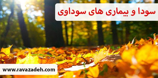 Photo of سودا و بیماری های سوداوی