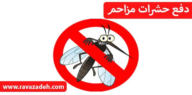 Photo of دفع حشرات مزاحم